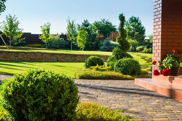 garden edging with mulch hedges